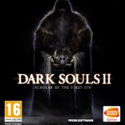 How To Install Dark Souls II Scholar Of The First Sin Game Without Errors