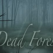 How To Install Dead Forest Game Without Errors