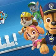 How To Install Paw Patrol On A Roll Game Without Errors